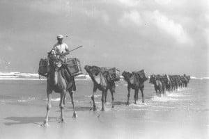 Palestine 1898